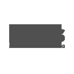 Felis-Grigio